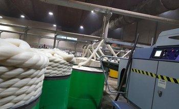 Cuando más grosos en las lanas más dificultad para comercializarlas.
