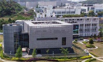 El laboratorio de Wuhan en China es uno entre 50 en el mundo con el nivel más alto en bioseguridad