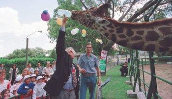 El intendente Mariano Arana le da de tomar agua a una jirafa del zoológico de Villa Dolores en 1999.