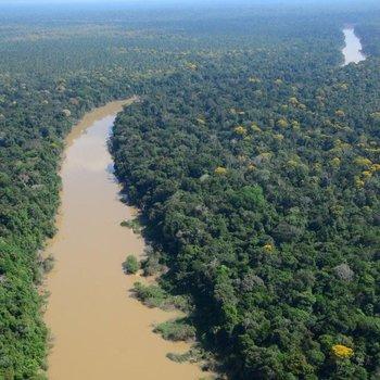 Los científicos estudiaron un área de la selva en el noreste de Perú