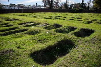 """La compleja organización para cortar el """"efecto dominó"""" de ocupación de fosas en el Cementerio Norte"""