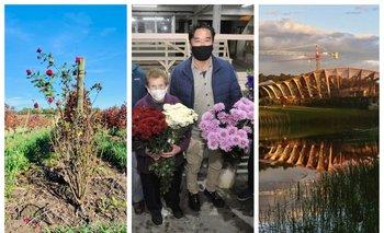 Vinos, flores y un futuro museo, en esta edición de Picnic