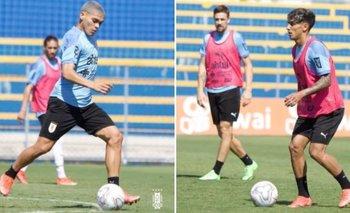 Ocampo y Torres