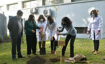 La ministra plantó un árbol este viernes 25 de junio.
