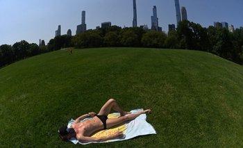 Un hombre aprovechó la ola de calor para tomar sol con muy poca ropa en el Central Park de Nueva York