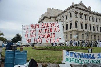 El 2 de julio los apicultores realizaron una movilización en Montevideo para exteriorizar los motivos de una crisis que tiene en jaque al sector.