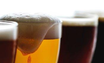 Cerveza layer