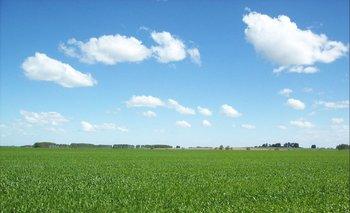Indarte destacó el interés de inversores uruguayos que no son del sector.