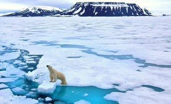 ¿A qué velocidad se derrite el Ártico? ¿Podemos pararlo?