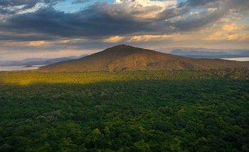 Etiopía ha perdido parte de sus bosques durante los últimos años.