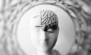 Cuando las imágenes se sustituyen rápidamente la activación cerebral no llega al lóbulo prefrontal.