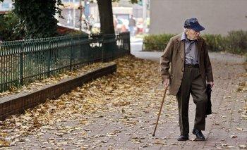 Los procesos de envejecimiento son complejos, porque abarcan mecanismos genéticos, procesos celularesy aspectos funcionales