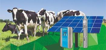 La principal ventaja de este sistema sobre los predios ganaderos es que las grandes distancias ya no son un problema para los productores.