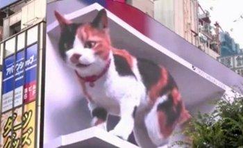 El gato gigante de las calles de Tokio
