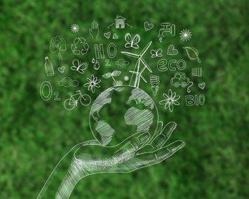 Los productos sustentables crecen año a año en las ventas online.