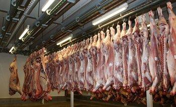 Carne vacuna en stock en cámara de frigorífico.