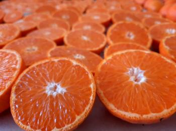 Objetivo: frutas ricas, nutritivas y sanas.