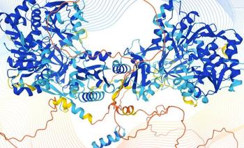 Las cadenas de aminoácidos de cada proteína se pliegan en una estructura tridimensional única. Y esa forma determina su función en el cuerpo humano