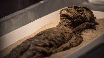 Tras más de 20 años de investigación, la Unesco incluyó a las momias de la cultura chinchorro en la Lista de Patrimonio Mundial.