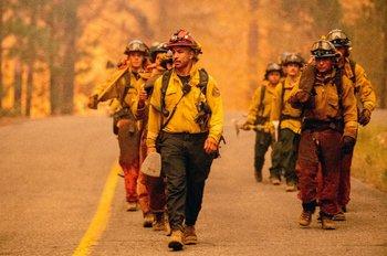 Más de 13 mil hectáreas ya fueron consumidas por el fuego