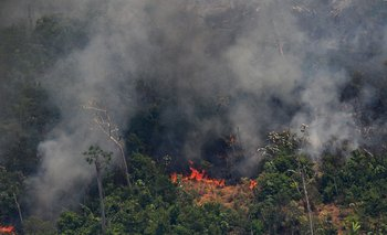 Imagen aérea tomada este viernes en la selva amazónica, a 65 kilómetros de la ciudad de Porto Velho