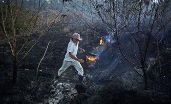 El productor agropecuario Helio Lombardo Do Santos cerca de Porto Velho, Rondonia