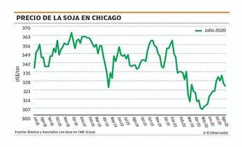 Altas perspectivas de producción le pegaron al precio de la soja en Chicago