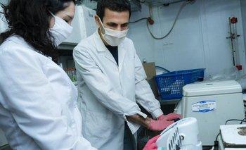 En Argentina se desarrolla una de las vacunas para el SARS-CoV-2
