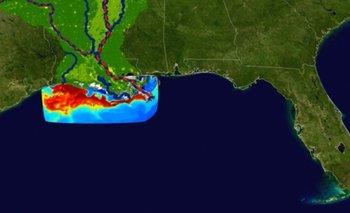 Se trata de una región marina, cercana a las costas de los estados de Texas, Luisiana y Mississippi