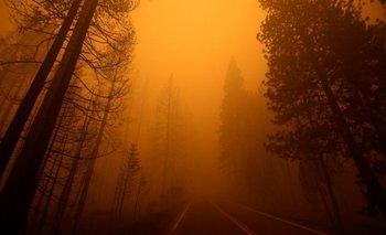 El humo y el cielo naranja sobre una ruta cerca de Greenville, California.