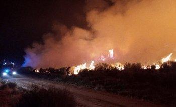 La ola de calor provocó incendios en varias zonas de España