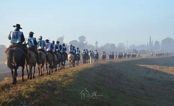 En la Marcha de Oro participaron 89 animales de 13 departamentos y 68 cabañas
