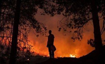 La región de Kabylie fue la más afectada por los peores incendios en la historia de Argelia