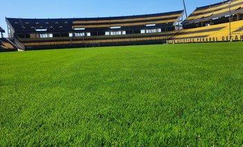 El césped del Estadio Campeón del Siglo mejoró muchísimo y así espera a la selección