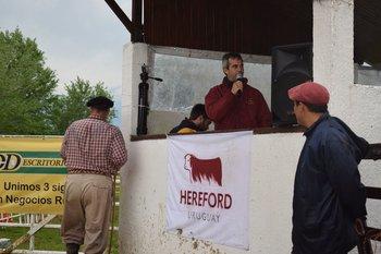 Javier Aznárez presidente de la Sociedad de Criadores de Hereford