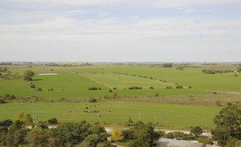 En 2020 el promedio de precio para la compraventa de tierras fue US$ 3.295/ha