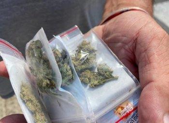 Bolsas de marihuana
