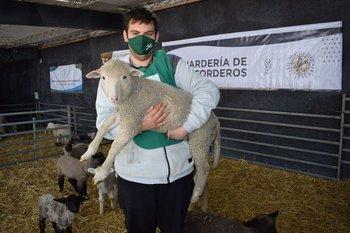 Bergessio, el cordero más buscado para las fotos en la Expo Prado.