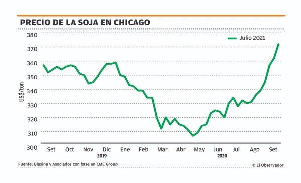 Valores locales de soja nueva directa a puerto cerca de US$ 370 por tonelada