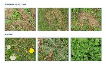 Imágenes del informe de la Comisión de Field de la AUF sobre el piso del Estadio Goyenola de Tacuarembó