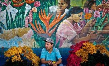 ¿Cómo funcionaría políticamente esta República Federal de Centroamérica? Nadie lo puede saber.