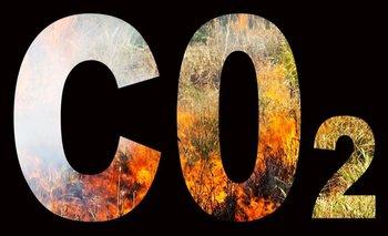 En el entorno adecuado, el CO2 es un gas extremadamente útil.