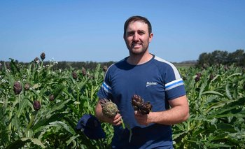 Jorge sigue los pasos de sus antepasados italianos y planta alcauciles en Punta Espinillo.