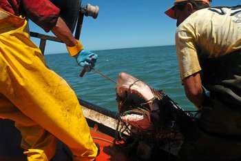 Pescadores en Cabo Polonio.