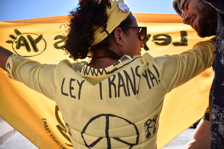 Resultado de imagen para uruguay ley trans todos somos iguales