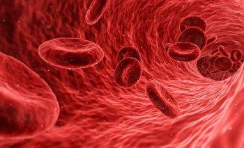 El covid-19 prefiere adherirse al grupo sanguíneo A
