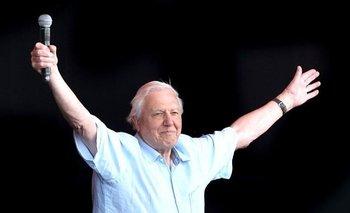 David Attenborough atrae a la gente joven, no solo por sus posteos en Instagram. El año pasado fue ovacionado como una estrella del rock en el Festival de Glastonbury.