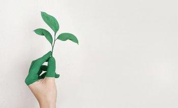 En la edición 2021 se reconocerá modelos de negocio o proyectos que aporten a la sustentabilidad ambiental.
