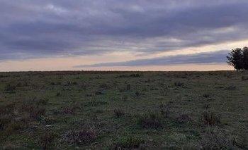 Campo de 54 hectáreas.