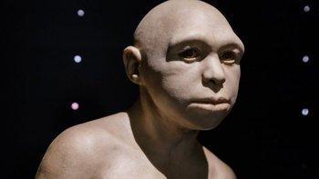 Una escultura que representa al Homo antecessor.